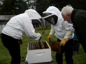 Owhango Beekeepers Club